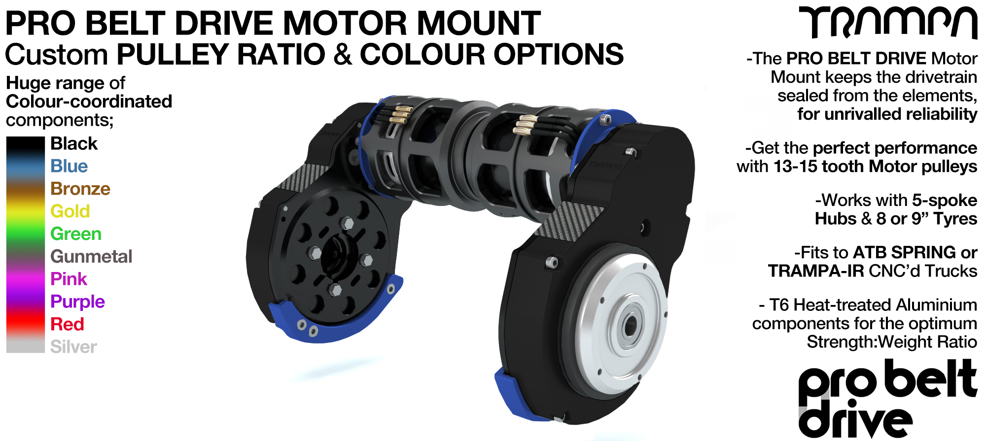 Mountainboard PRO Belt Drive TWIN Motor Mounts with Motors - Custom