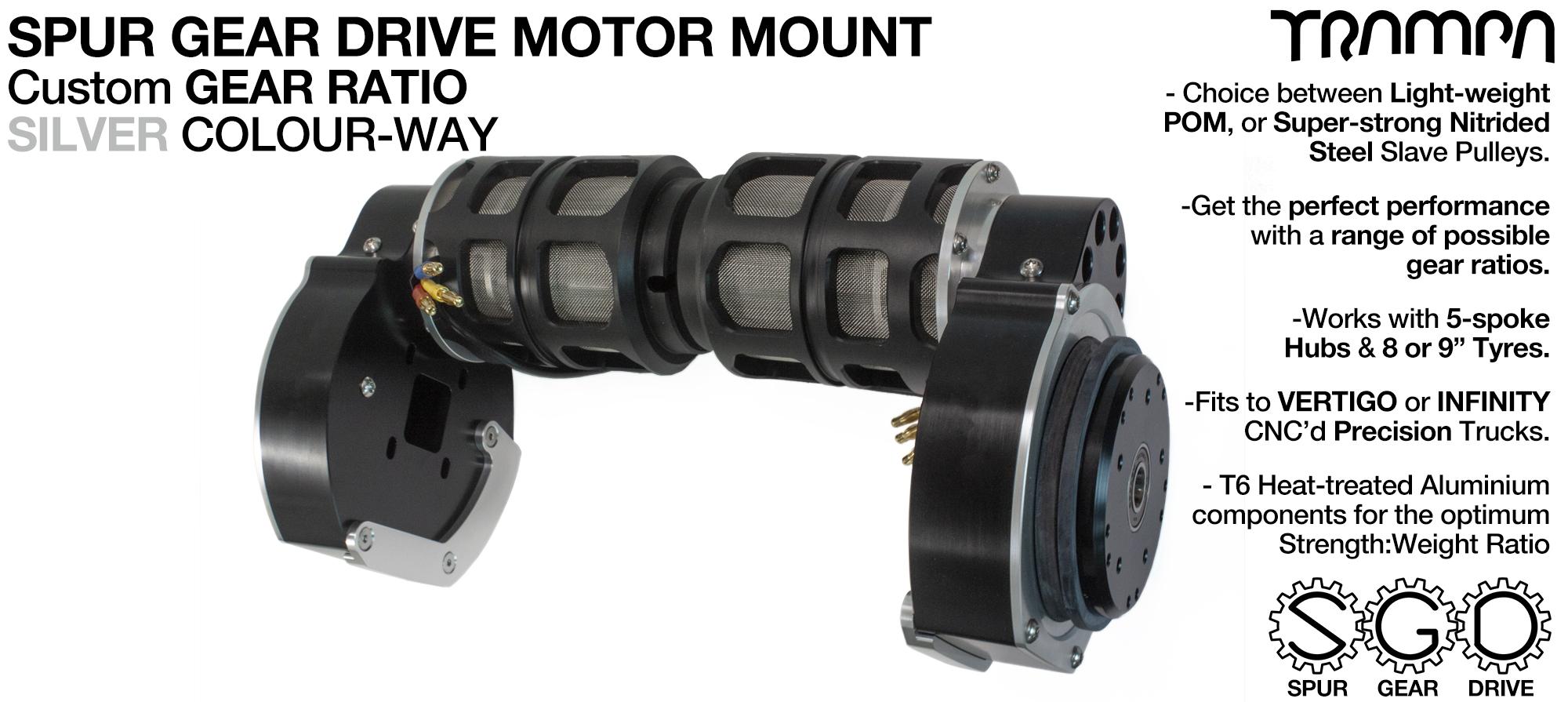 Mountainboard EXTERNAL Spur Gear Drive TWIN Motor Mounts