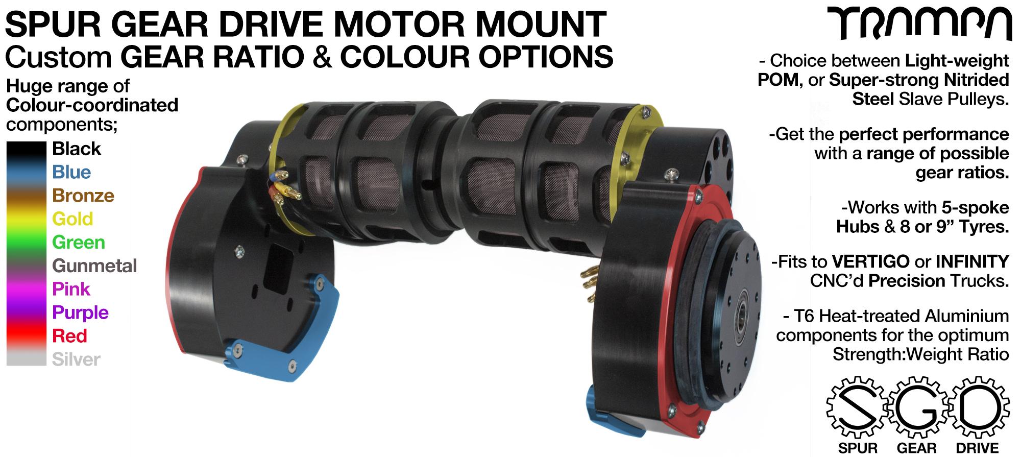 Mountainboard Spur Gear Drive TWIN Motor Mounts - with Motors