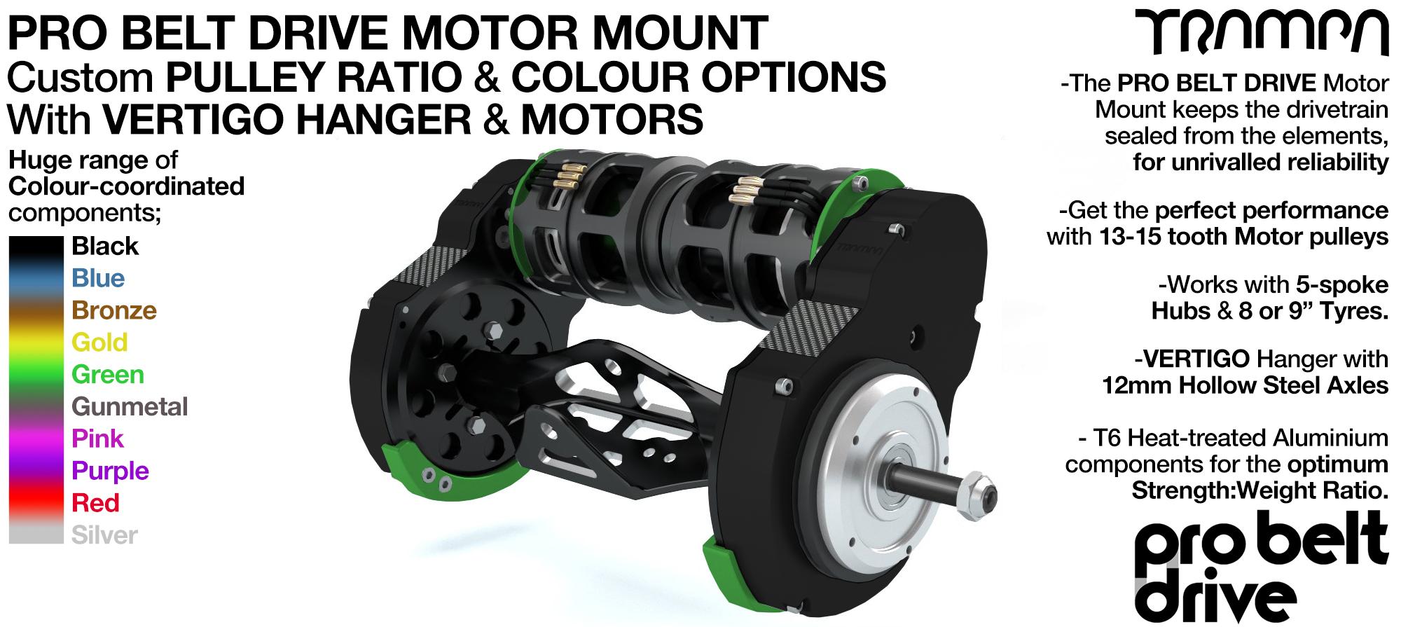 Mountainboard PRO Belt Drive TWIN Motor Mounts WITH Motors & Precision VERTIGO Hanger