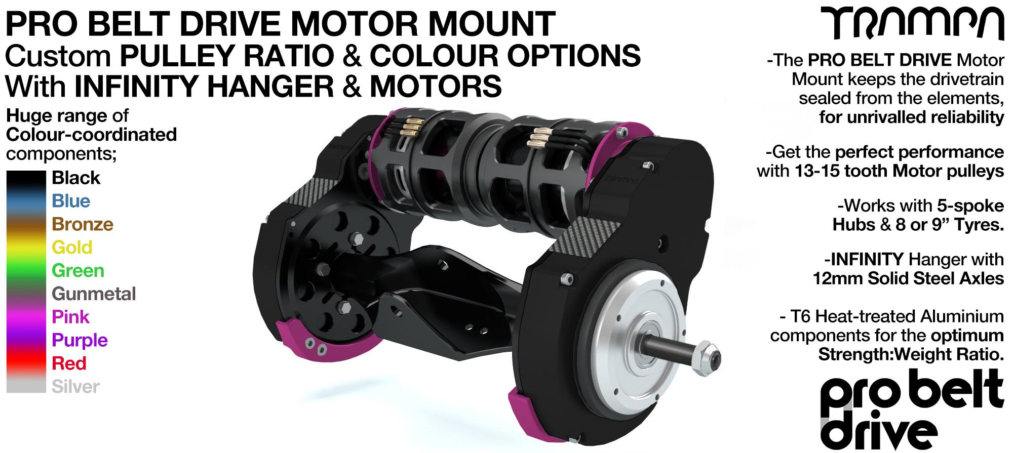 Mountainboard PRO Belt Drive TWIN Motor Mounts WITH Motors & Precision INFINITY Hanger