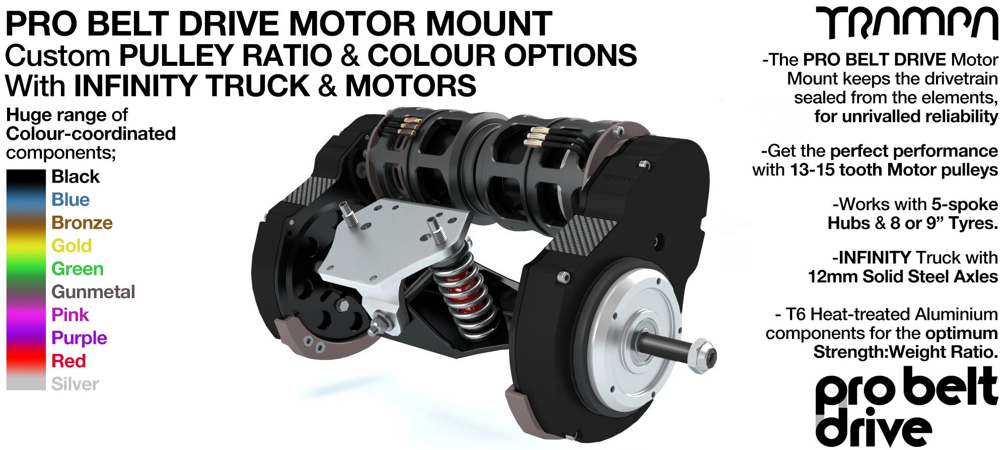 Mountainboard TPRO Belt Drive Motor Mounts, Motors & Precision INFINITY Truck