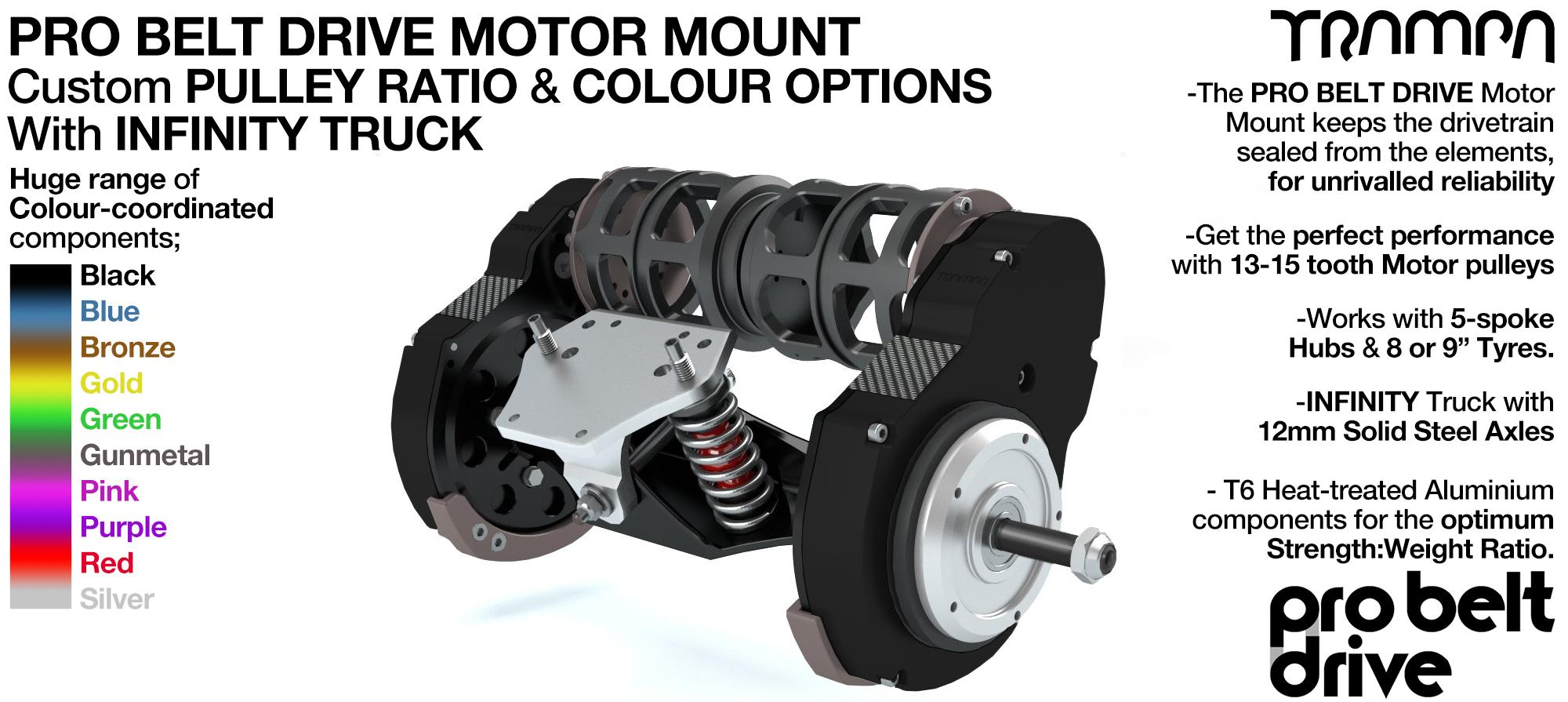 Mountainboard PRO Belt Drive TWIN Motor Mounts, Motors & Precision INFINITY TRUCK
