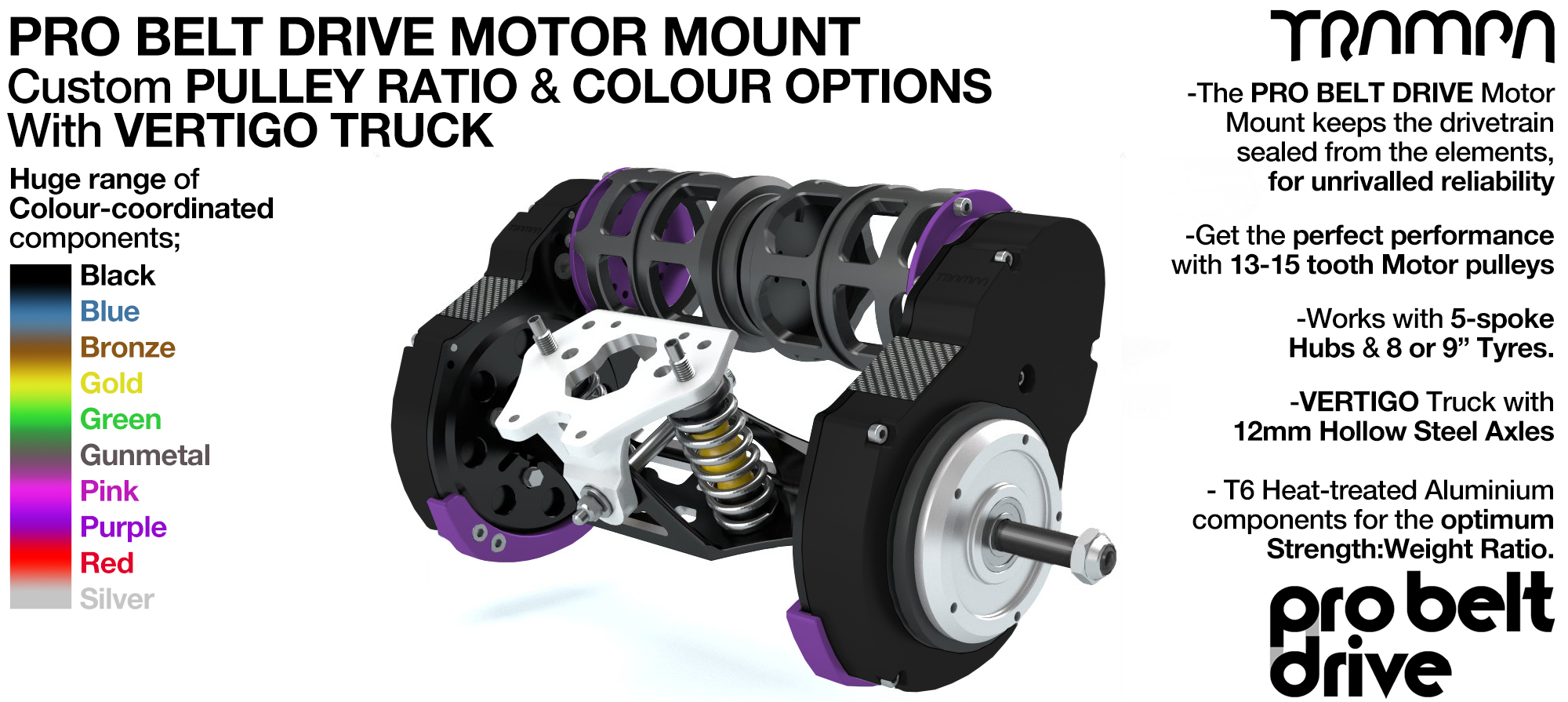 Mountainboard PRO Belt Drive TWIN Motor Mounts & Precision VERTIGO Truck