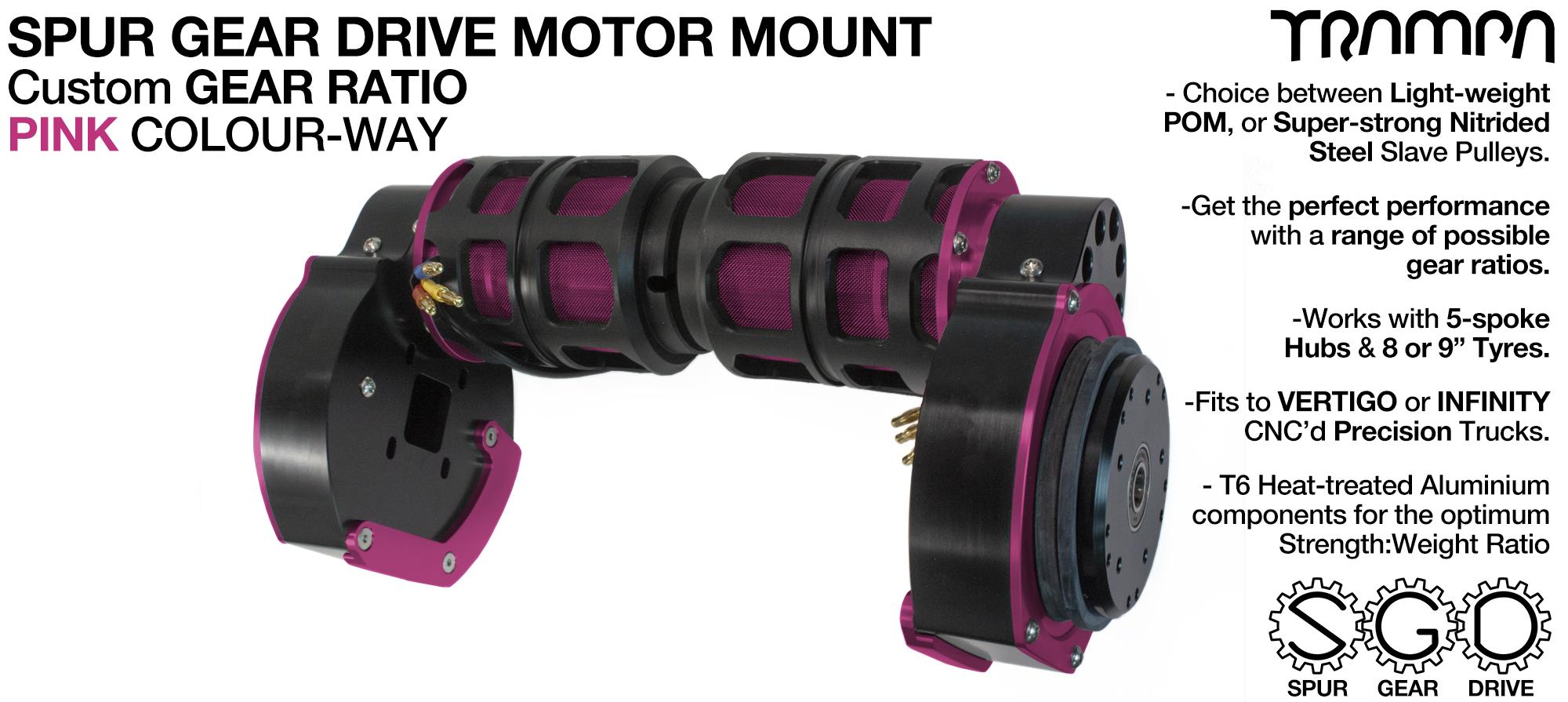 Mountainboard Spur Gear Drive TWIN Motor Mounts - PINK