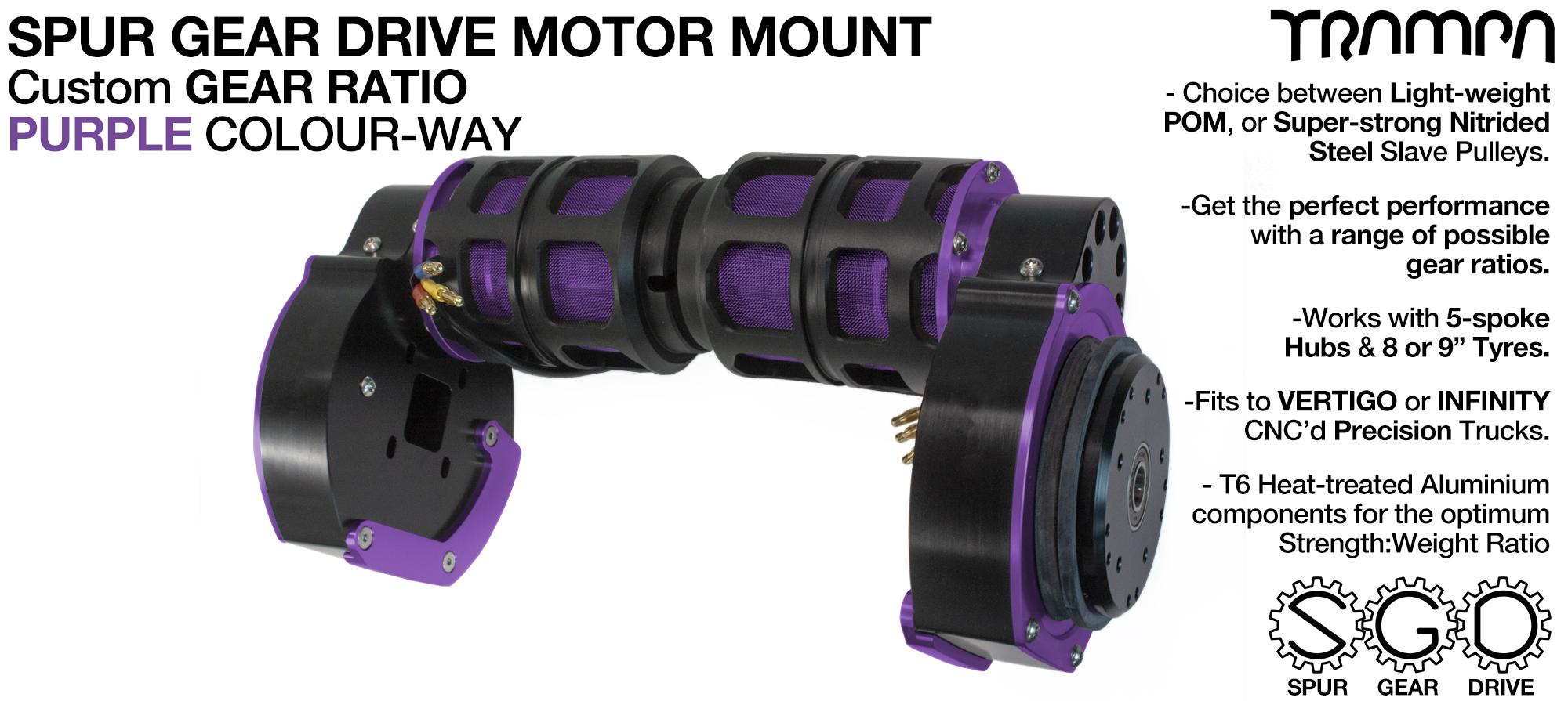 Mountainboard Spur Gear Drive TWIN Motor Mount - PURPLE