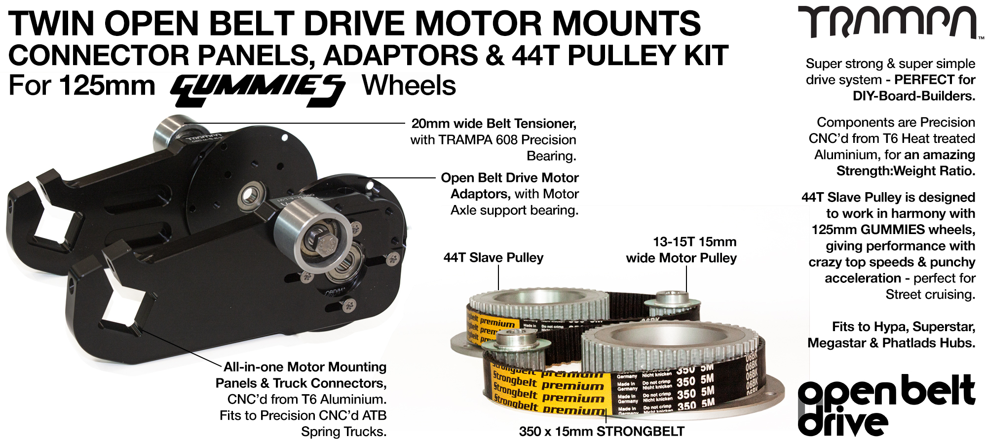 66T OBD Motor Mount & 44 tooth Pulley - TWIN