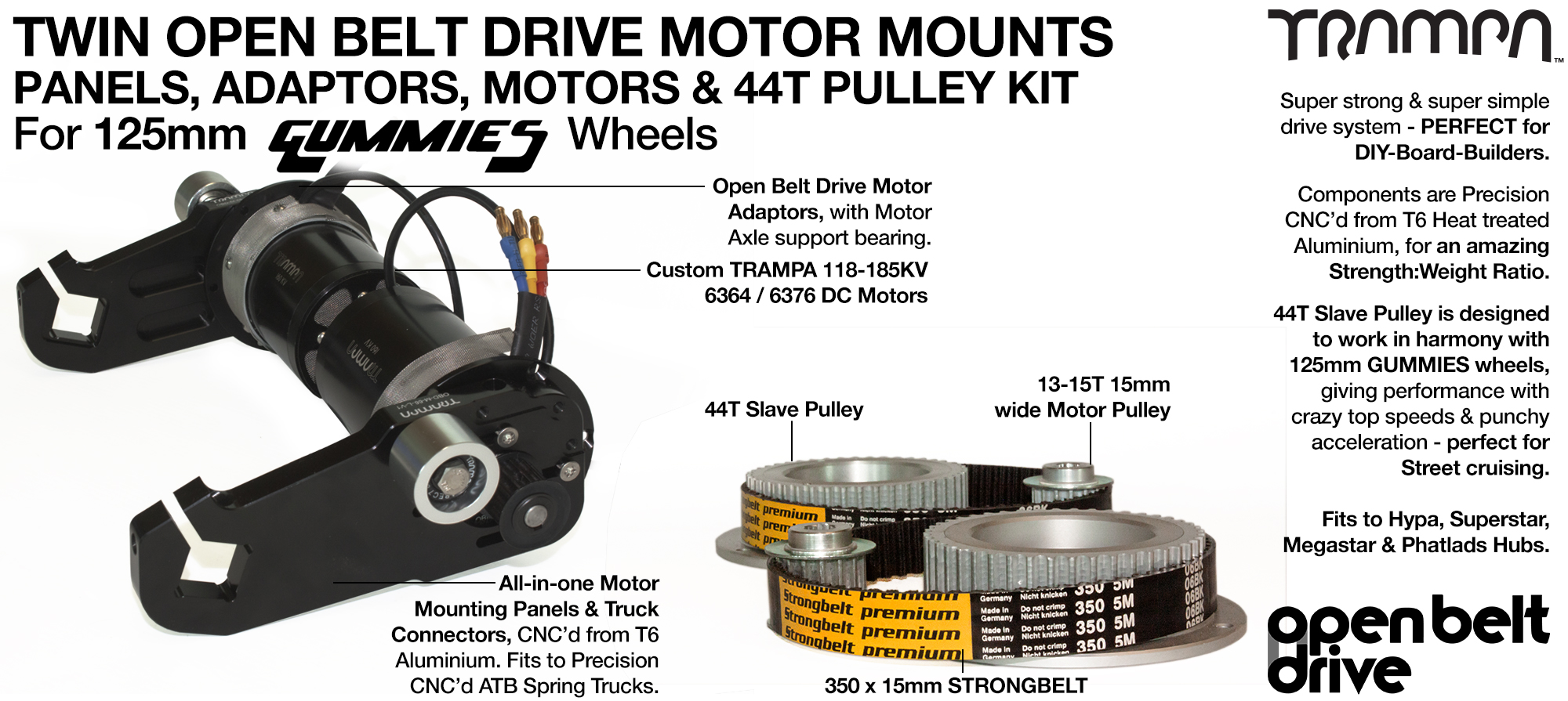 66T OBD Motor Mount with 44T Pulley kit & custom Motor - TWIN