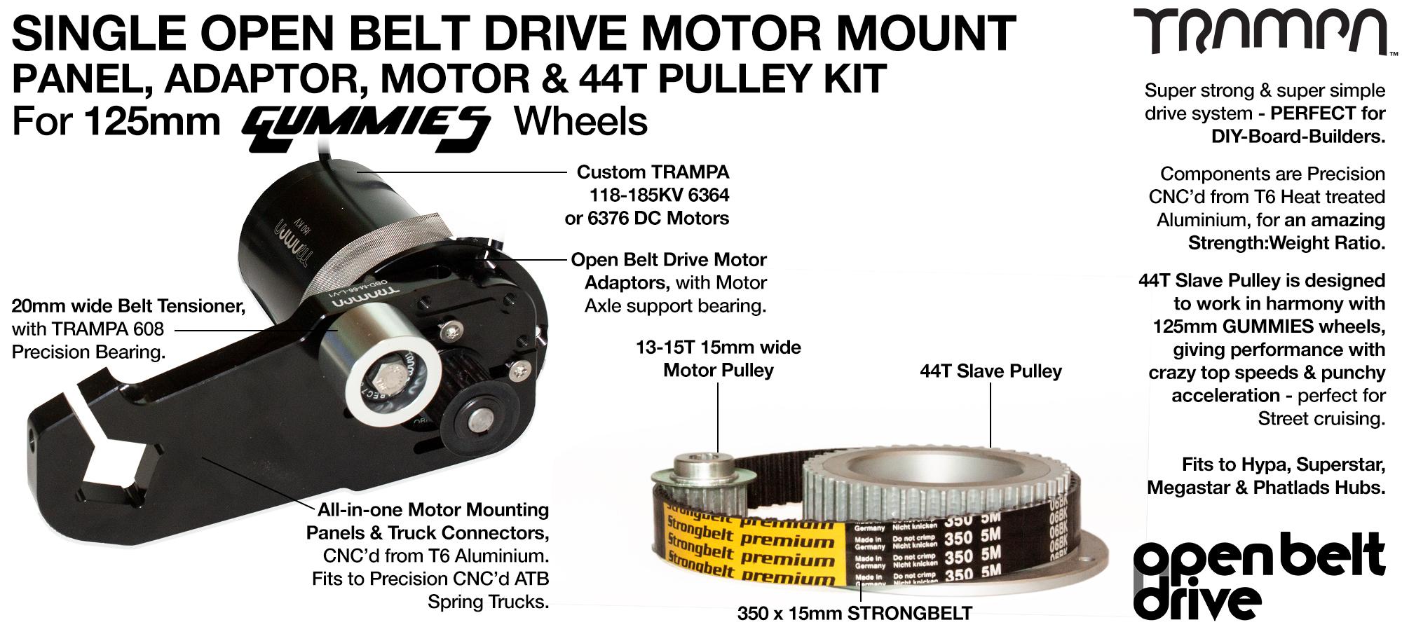 66T OBD Motor Mount with 44T Pulley kit & custom Motor - SINGLE