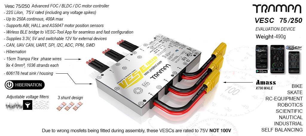 VESC 75V 250A In CNC T6 Silicone Sealed Aluminum Box