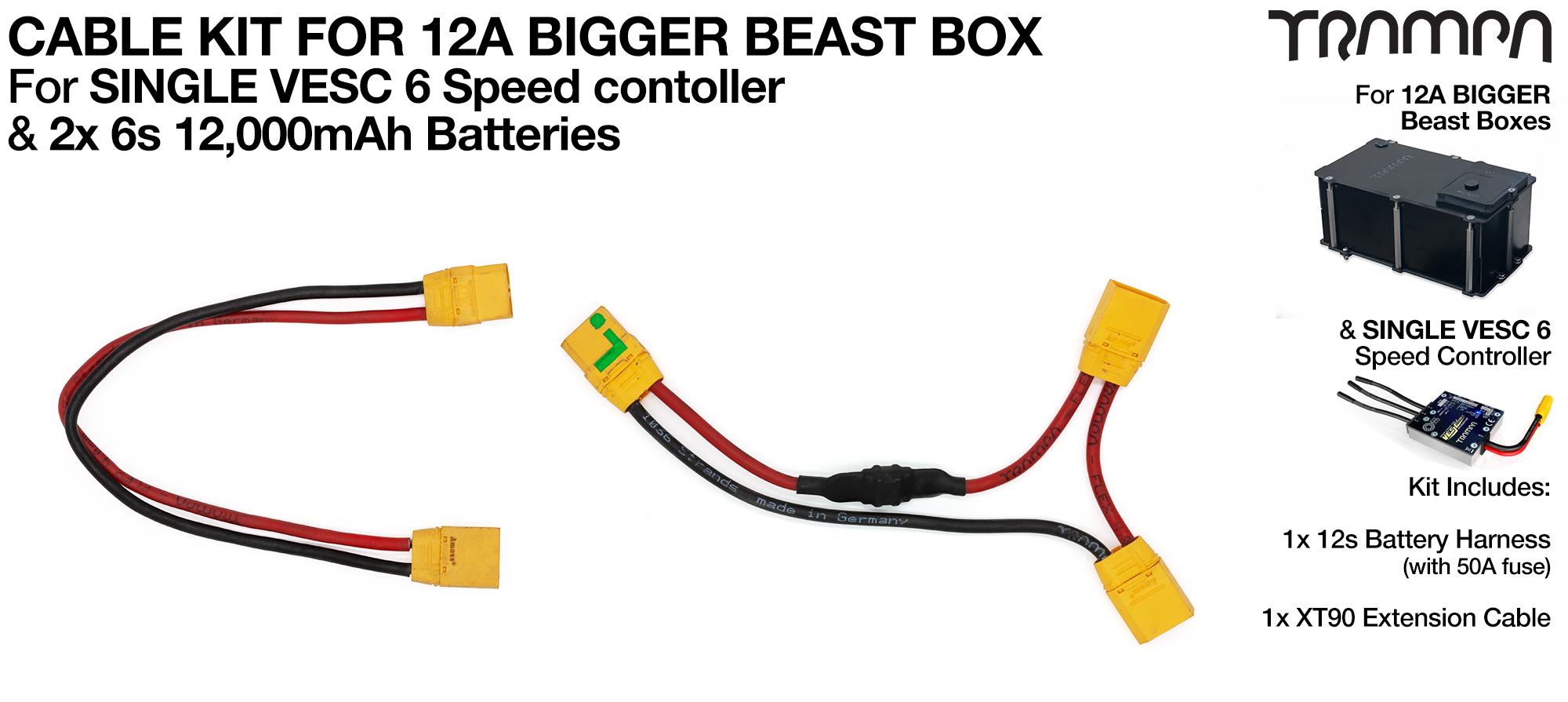 12A Bigger BEAST BOX & Single VESC 6 Cable Kit