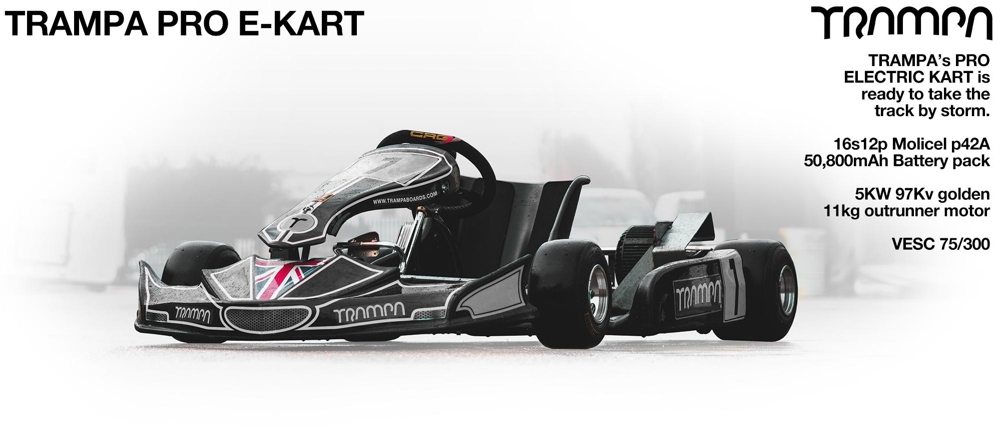 TRAMPA's Pro-Kart Go-Kart