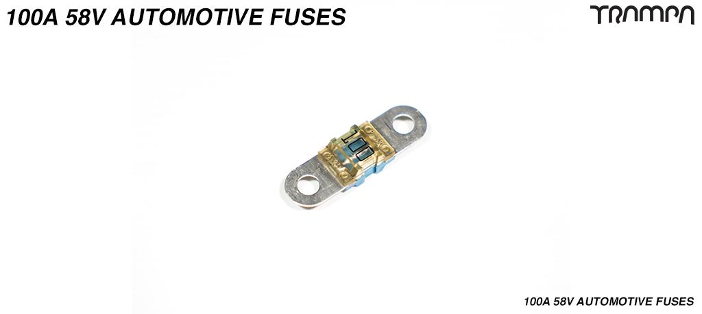 100A Automotive Fuses