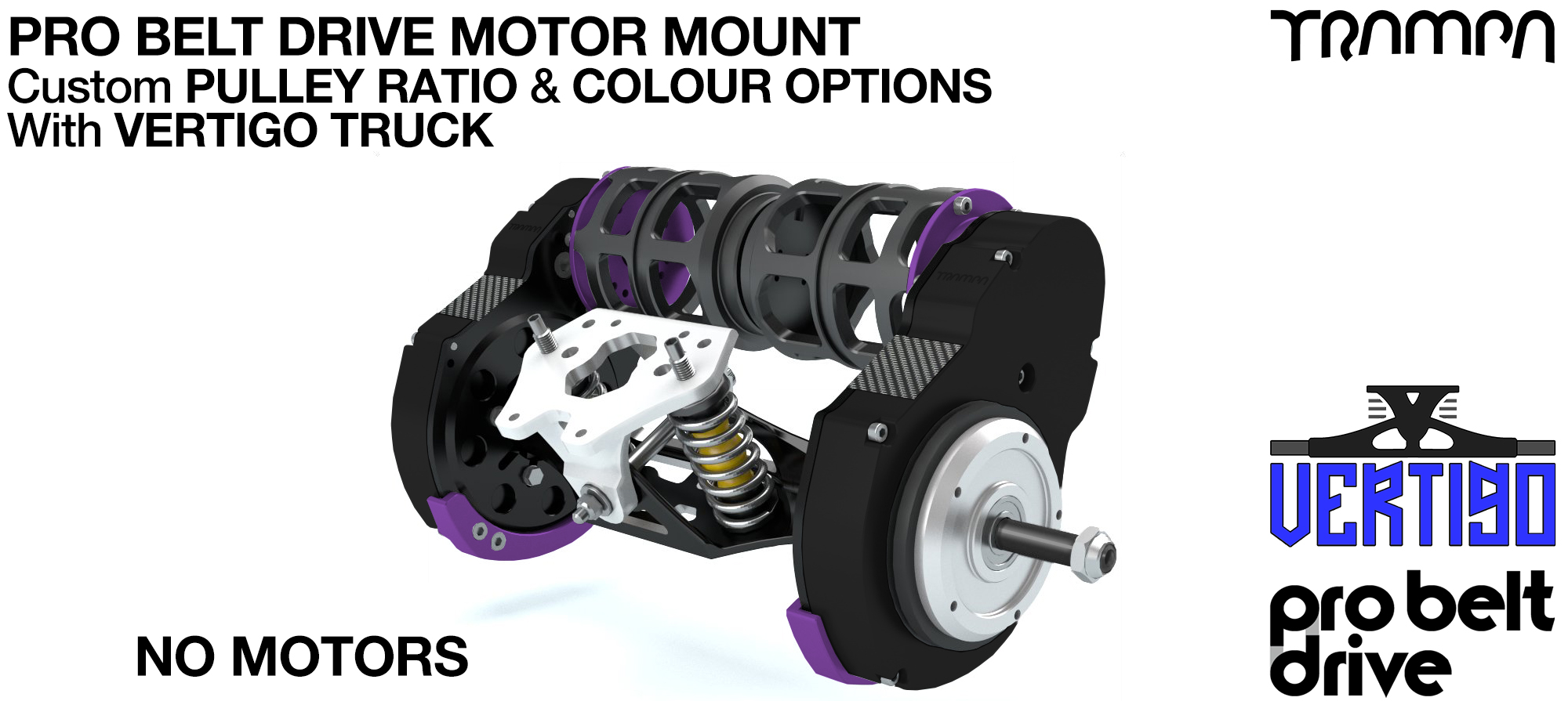 Mountainboard PRO Belt Drive TWIN Motor Mounts & Precision VERTIGO Truck