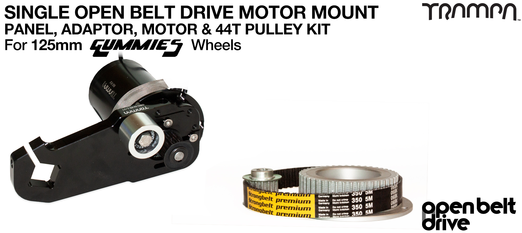 66T OBD Motor Mount with 44T Pulley kit & custom Motor - SINGLE