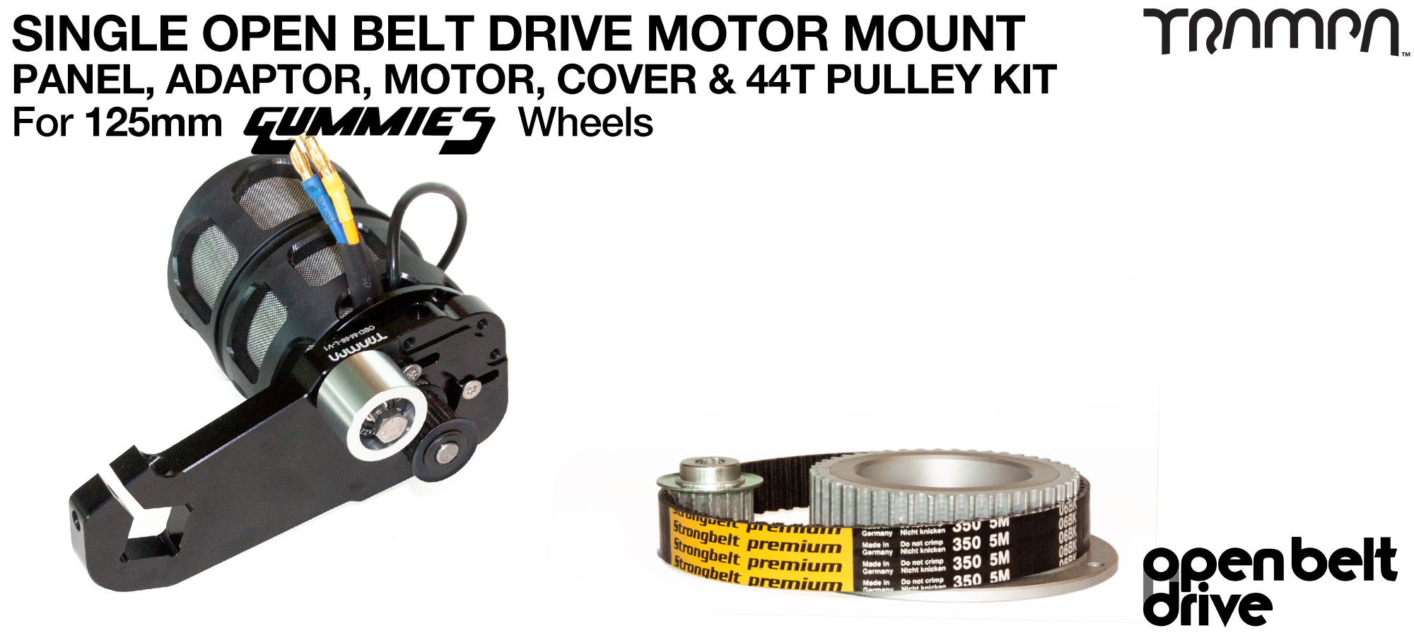 66T OBD Motor Mount with 44T Pulley kit, Motor & Filters  - SINGLE
