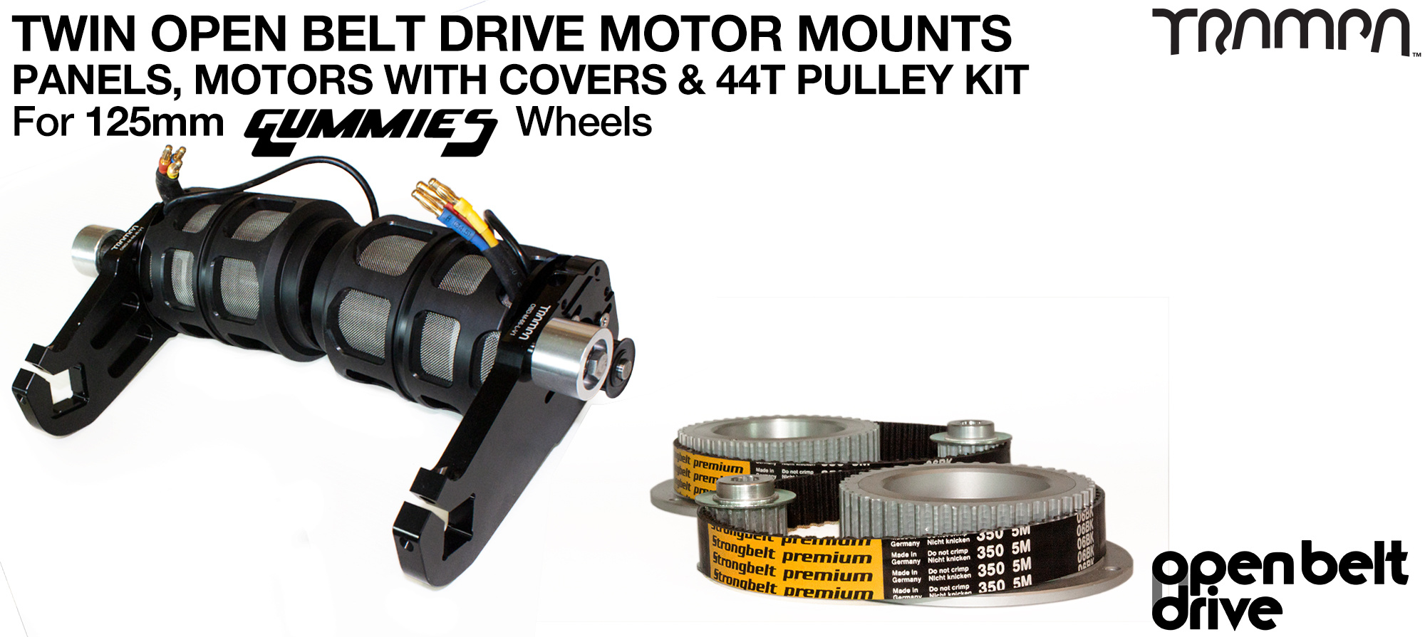 66T OBD Motor Mount with 44T Pulley kit, Motor & Filters  - TWIN