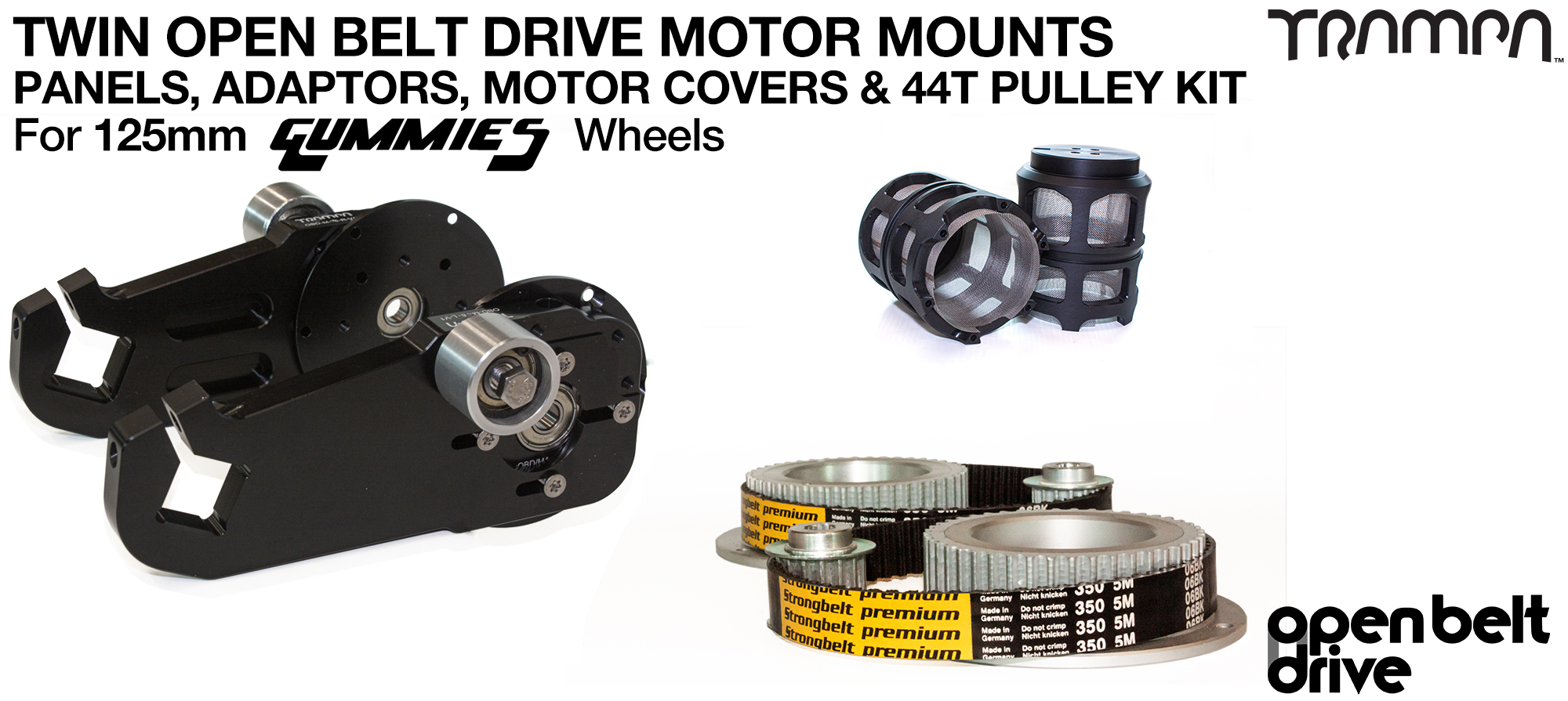 66T OBD Motor Mount with 44T Pulley kit & Motor Filters - TWIN