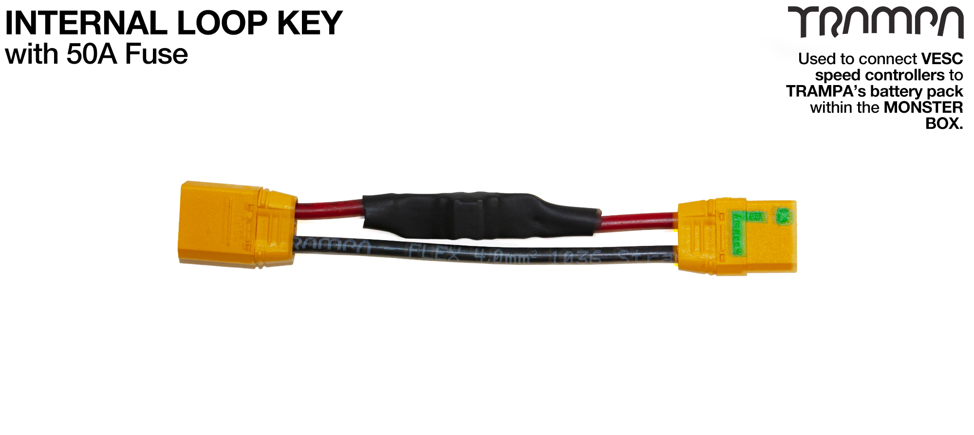 Internal Loop key with 100A FUSE