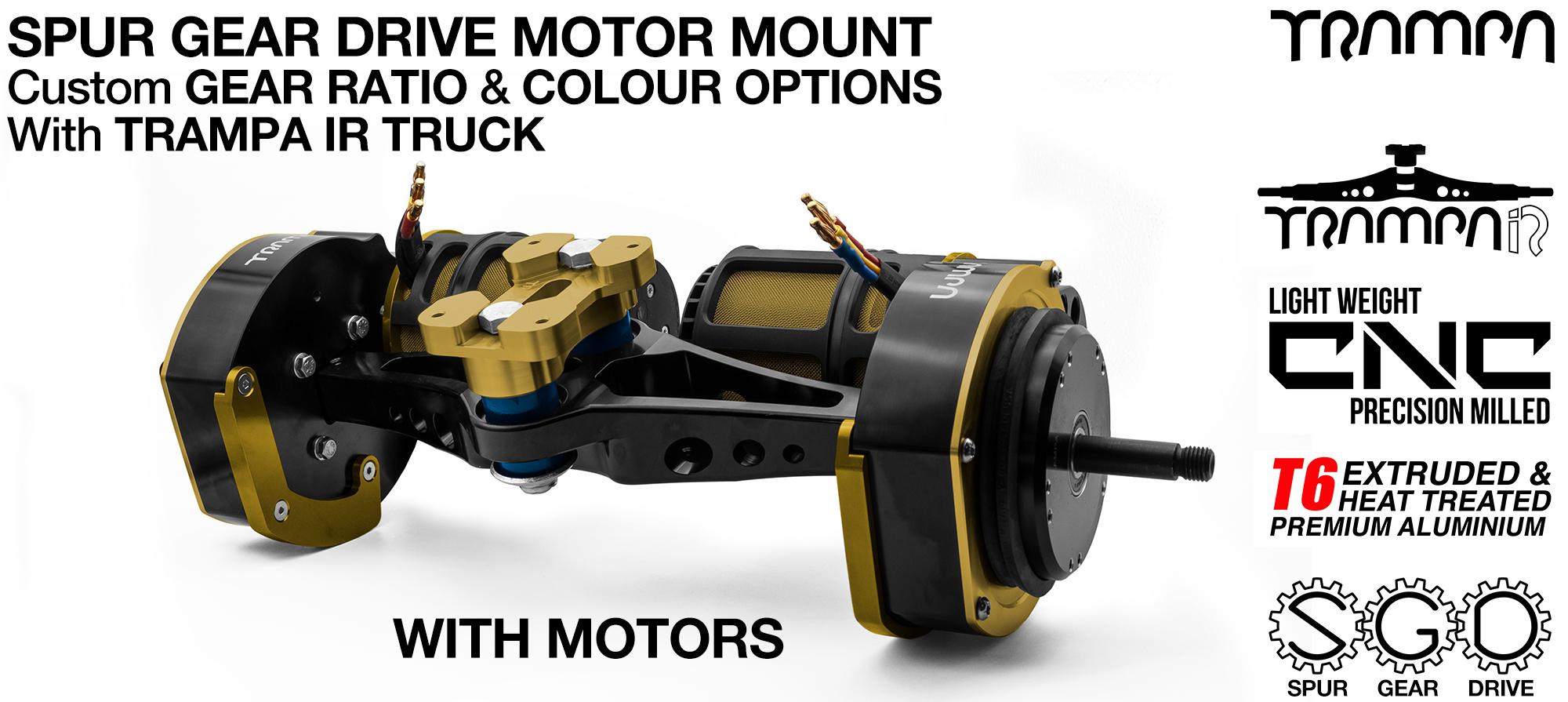 Spur Gear Drive Mountainboard Motor Mount & TRAMPA IR Trucks